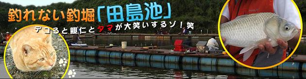 Tajimaike